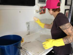 didyke tiling kitchen 11 - tiling the splashback using large sheets of small tiles