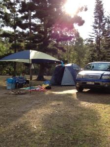 our campsite at mount tamborine all set up