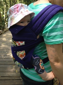 baby wearing on a mountain
