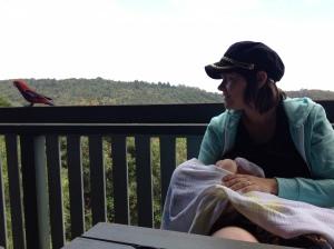 breastfeeding at O'Reilly's