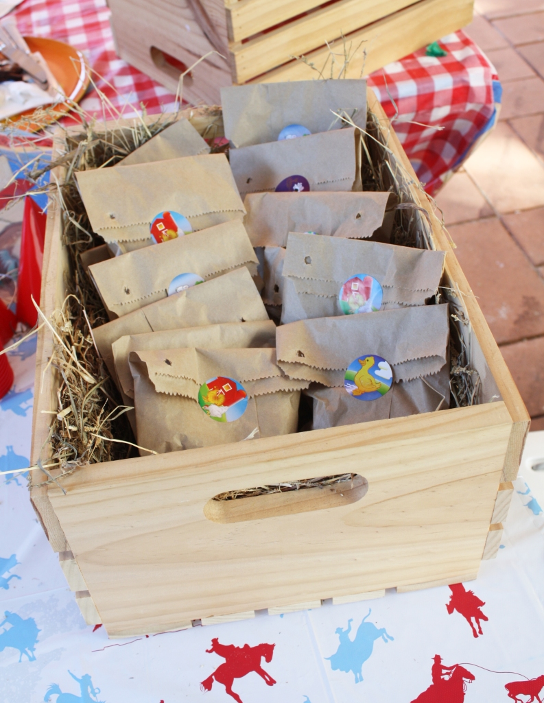 Wild west cowboy party - sugar free goodie bags